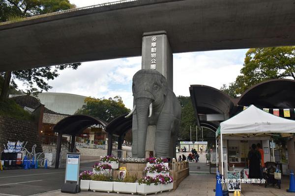 東京都 多摩動物公園 image
