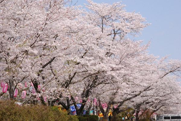 忠元公園 image