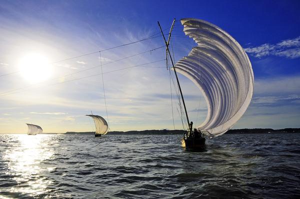 観光帆引き船 image
