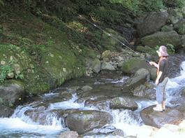 日向渓谷マス釣り場 image