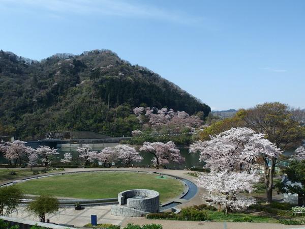 県立津久井湖城山公園 image