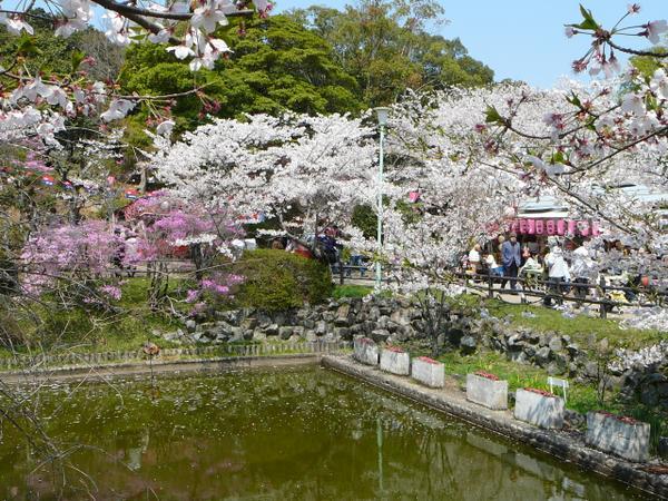 津偕楽公園 image