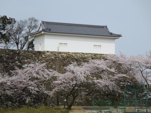 龜山城遺跡 image