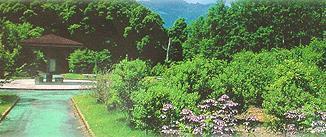中山薬草薬樹公園 (元丈の館) image
