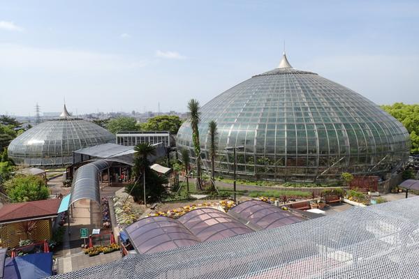 姫路市立手柄山温室植物園 image