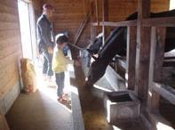 町田BURNET牧場 image