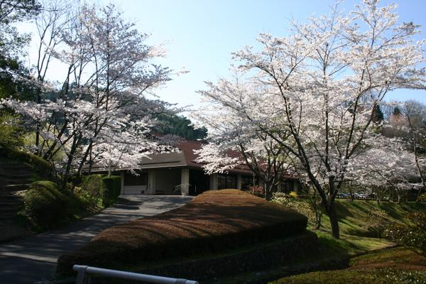 豐田市和紙之鄉 image