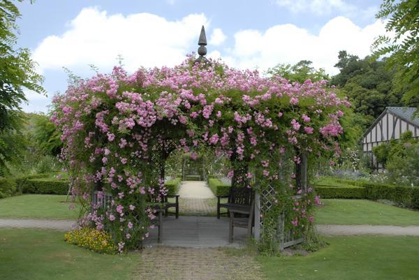 熊山英国庭园 image