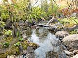 フラワー&ガーデン森の風 image