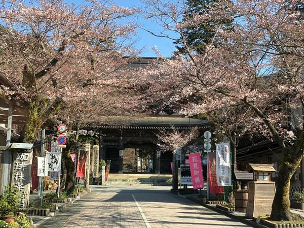 ทานิงุมิซัง เคงนจิ ซันโด (ทางเดินเข้าวัดเคงนจิ) image