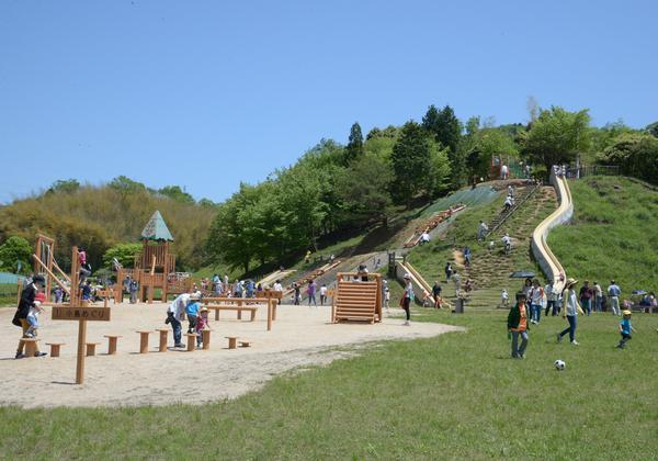 青葉山ろく公園 image