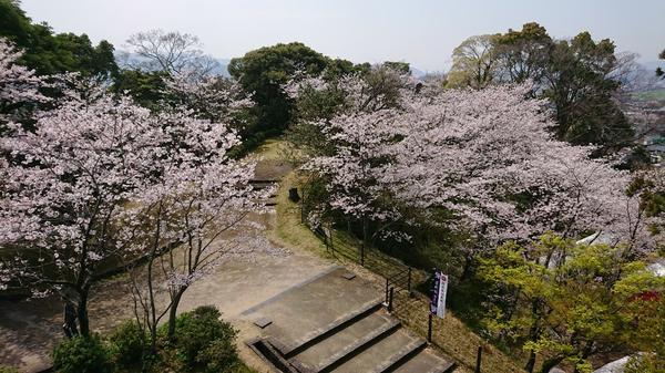 延岡城跡・城山公園 image