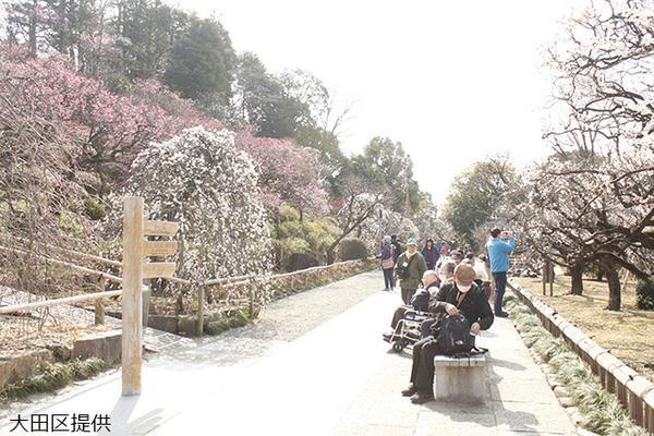 池上梅園 image