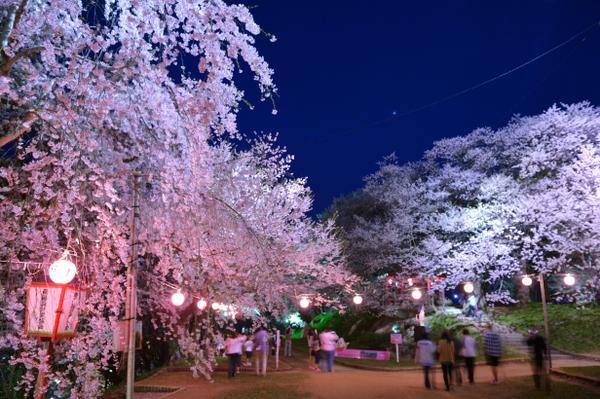 烏帽子山公園 image