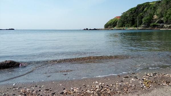 荒井浜海水浴場 image