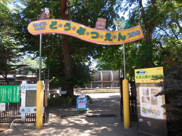 大宮公園小動物園 image