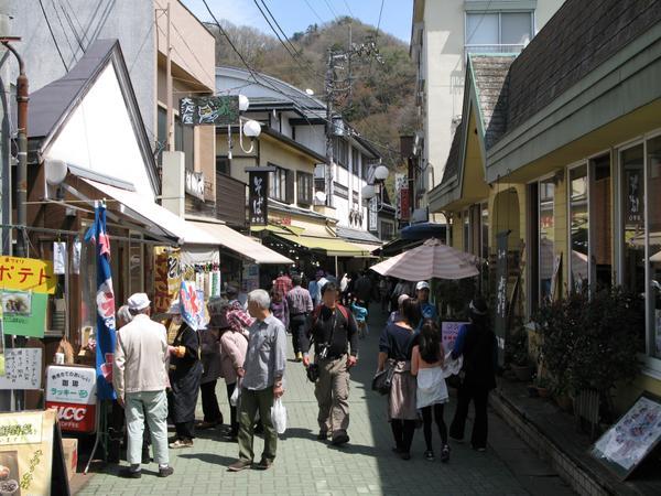 Iwadatami Dori Shopping District image