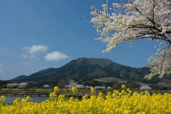 角田山 image