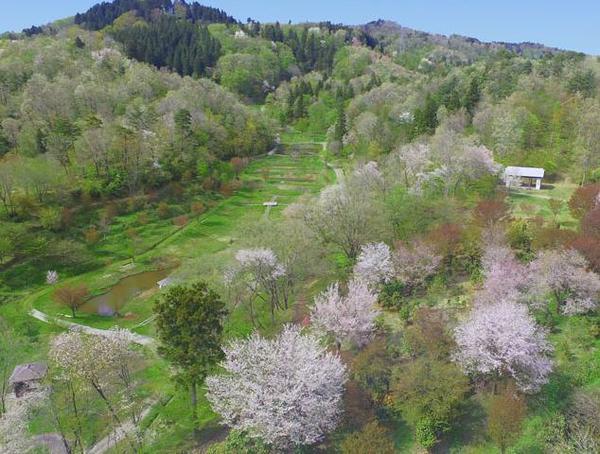 雪国植物園 image