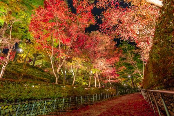 松雲山荘 image