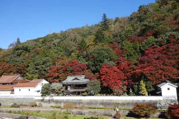 名勝旧堀氏庭園(堀庭園) image
