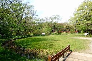 東京港野鳥公園 image