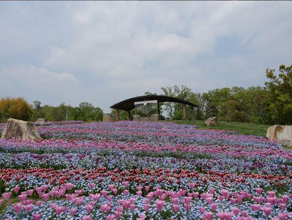 奈良県営 馬見丘陵公園 image