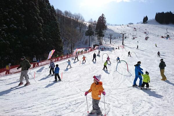 若杉高原おおやスキー場 image