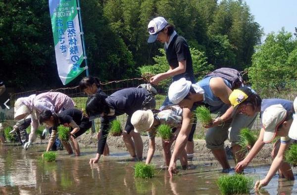 岡崎自然體驗之森 image