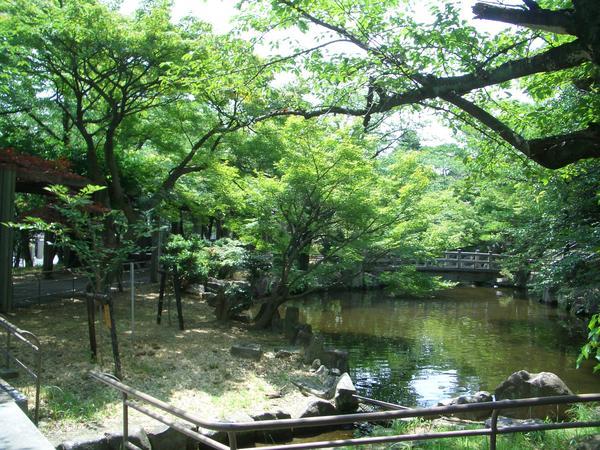 大山緑地 image