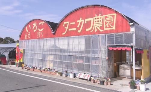 タニカワ農園 image