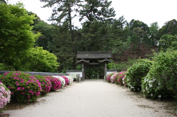本松山 高月院 寂静寺 image