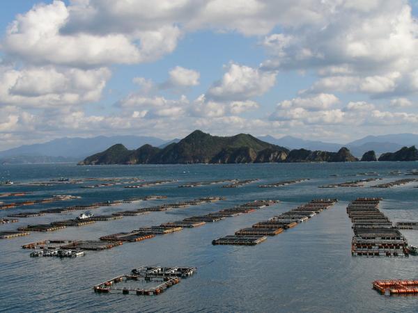 Hiburi Island image