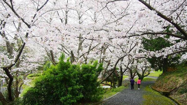 난레쿠 오모리야마 공원 image