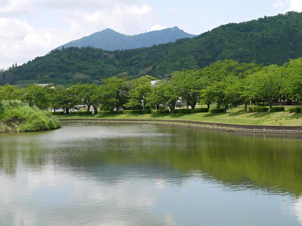 北条大池 image