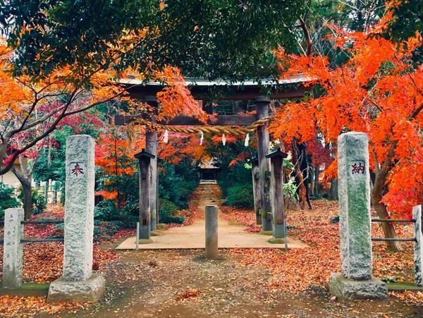 國王神社 image