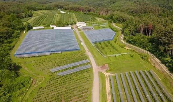 有限會社Sun Farm image