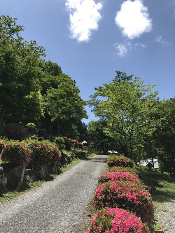 飛驒小坂交流之森 image