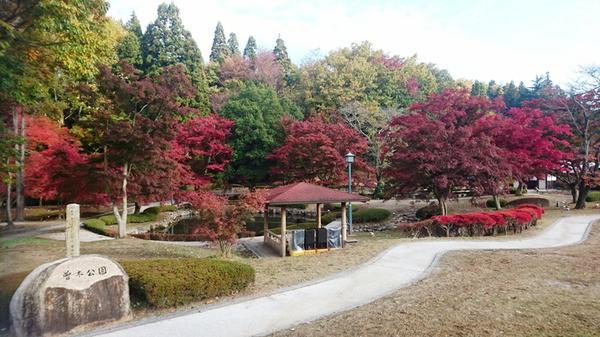 曽木公園 image