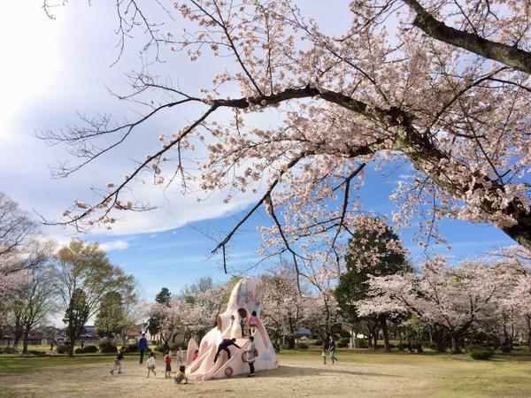 古井神社・古井近隣公園 image