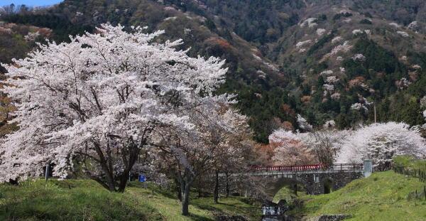 霞間ヶ渓公園 image