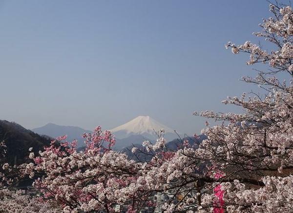 이와도노산 마루야마 공원 image
