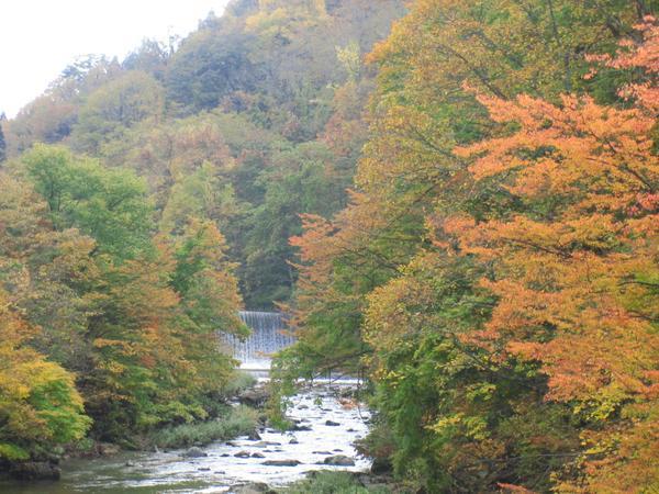 秋の宮温泉郷の紅葉 image