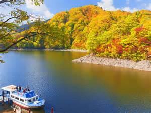 太平湖遊覧船 image
