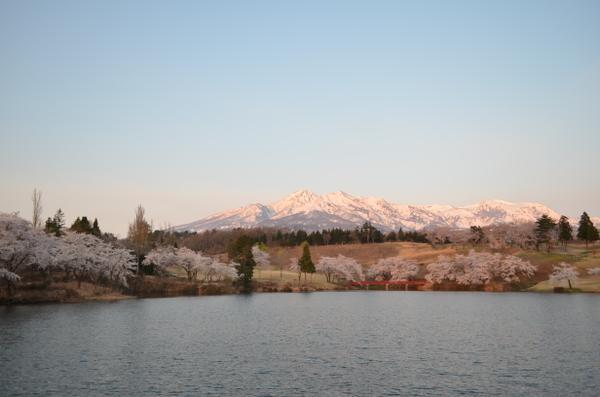 松ケ峯周辺の桜 image