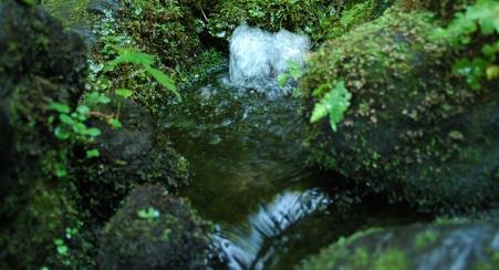 도도노모리 명수 공원 image