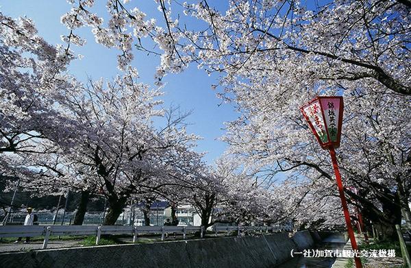 熊坂川河畔 image