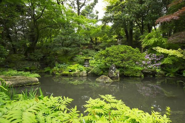西田家庭園・玉泉園 image