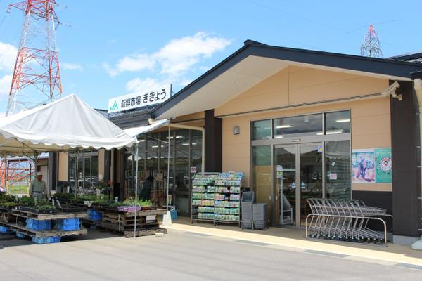 ชินเซ็นอิจิบะ-คิเคียว (ร้านขายผลผลิตการเกษตรของ JA ชิโอะจิริ) image