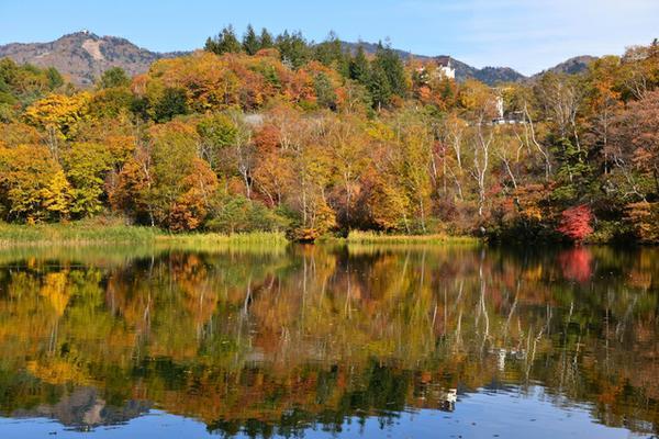 丸池 image